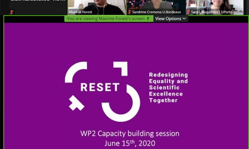 reset capacity building workshop